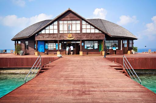 Sun Diving School