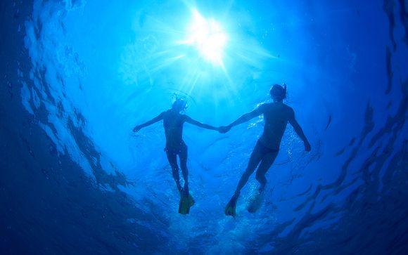 Diving at You & Me
