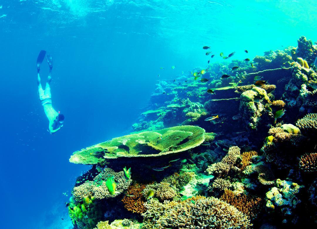 Kanuhura's Dive Centre